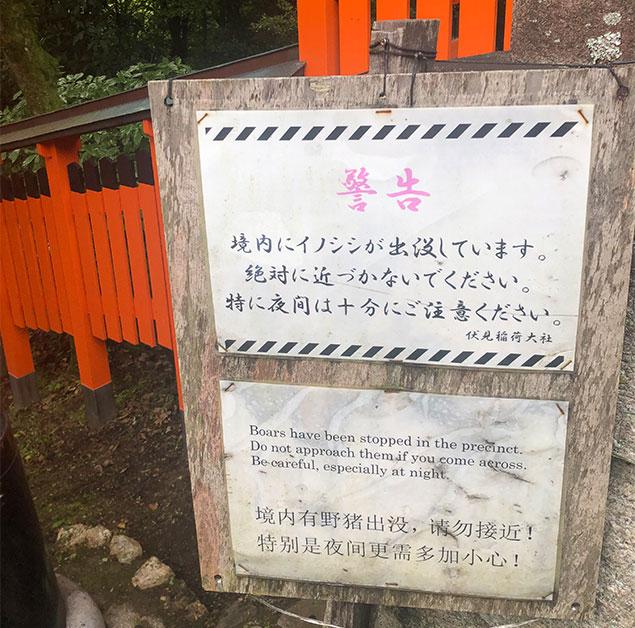京都 伏見稲荷大社9